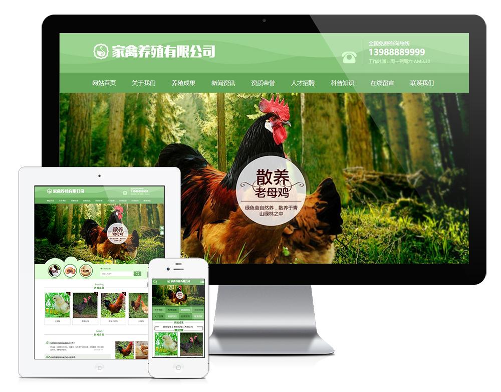 eyoucms家禽母鸡养殖类易优网站模板