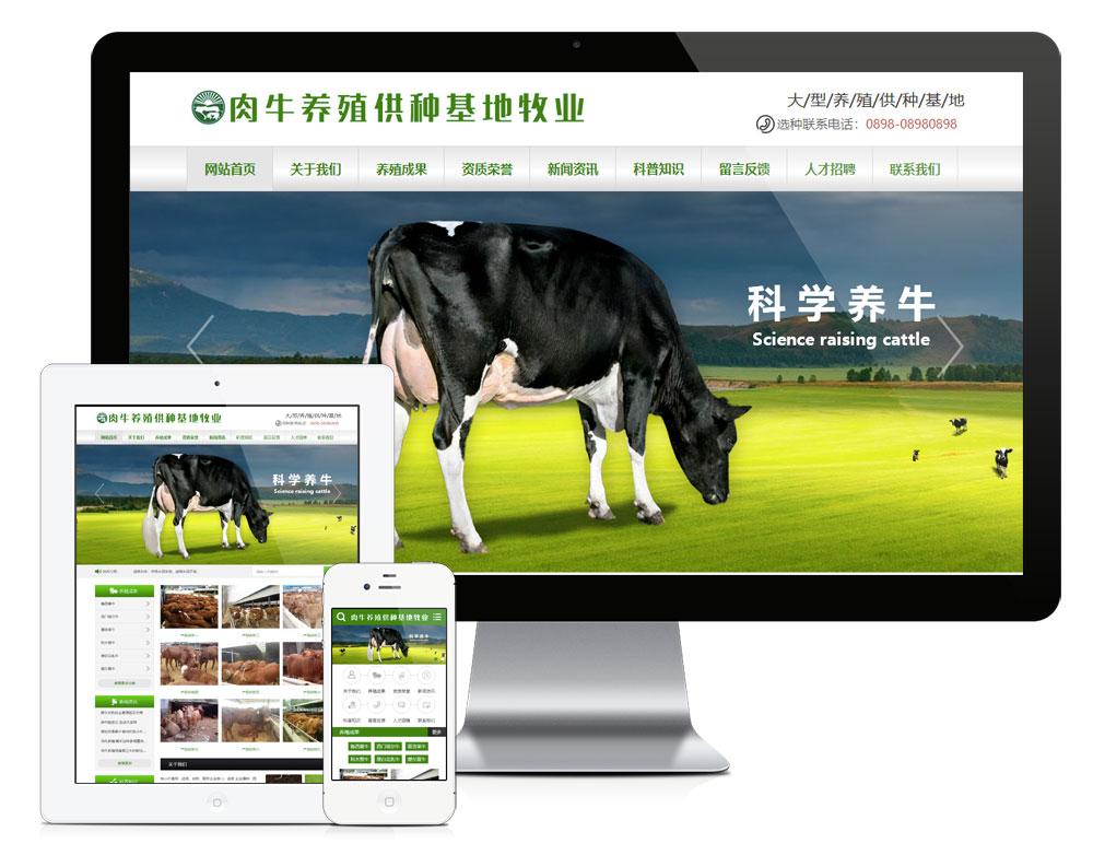 eyoucms肉牛养殖供应基地易优网站模板